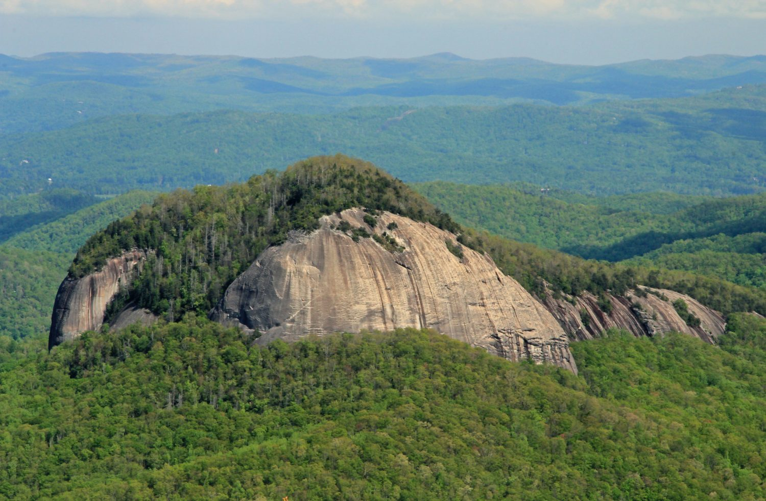 A photo of the Looking Glass Rock in the Pisgah National Forest, North Carolina