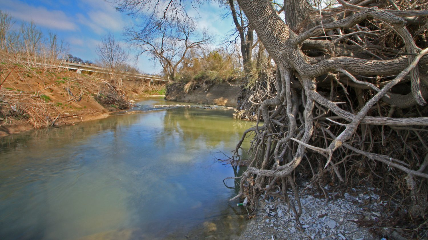 White Rock Creek, Texas