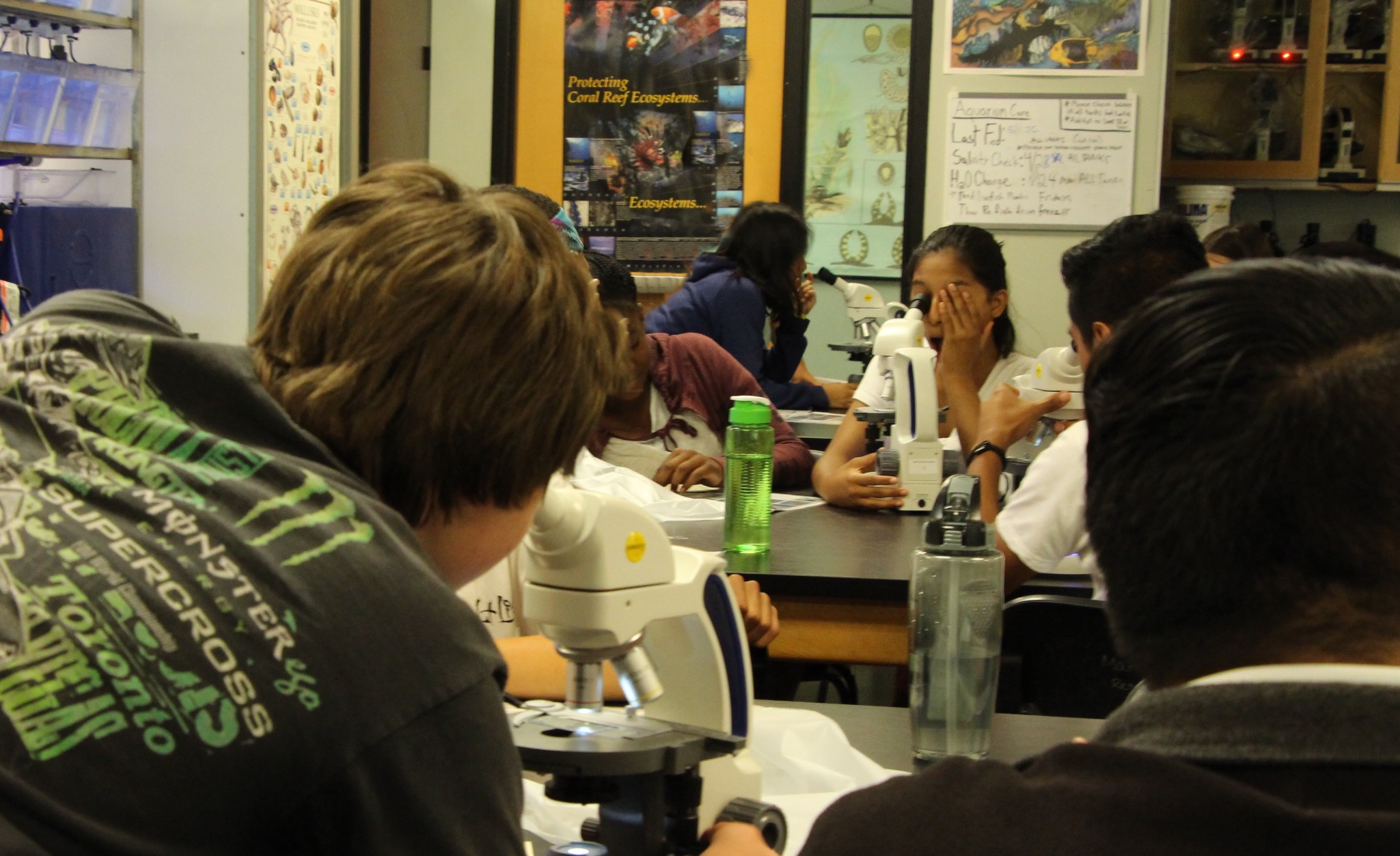 Students looking through microscopes in science class.