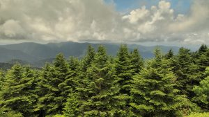 west view of Mount Mitchell in North Carolina