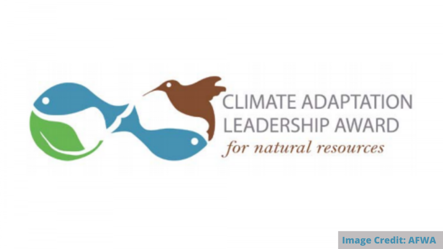 Climate Adaptation Leadership Awards logo