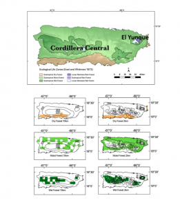 Observed ecological life zones in Puerto Rico